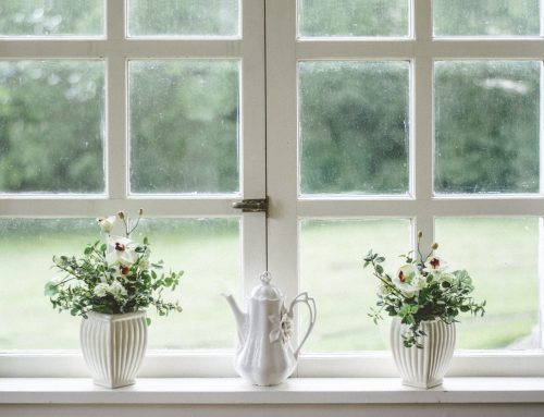 How to Choose Windows for an Assisted Living Community Remodel